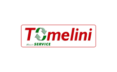 Tomelini